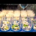 1360061761_weddings-nerja41.jpg